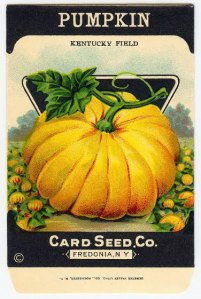 Pumpkin Card Seed Packet