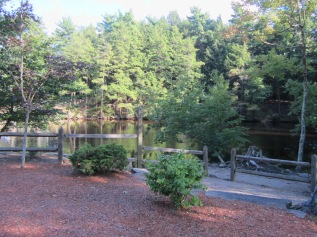 Mill Pond 01